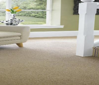 Get To Know Your Carpets